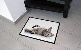 Fußmatte 50x75 cm